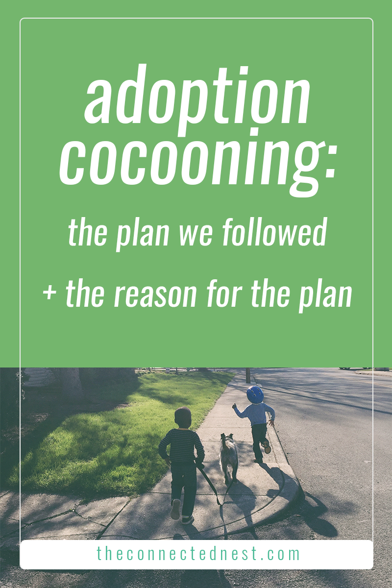 adoption cocooning