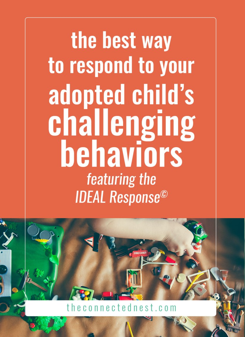 the best way to respond to your adopted child's challenging behaviors using five principles